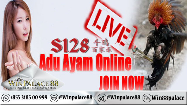 Livechat Operator S128 | Agen S1288 Indonesia
